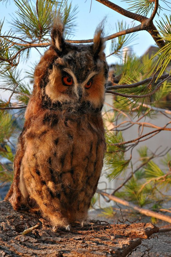 Needle Felted  Owl. Long-eared Owl. by darialvovsky on Etsy