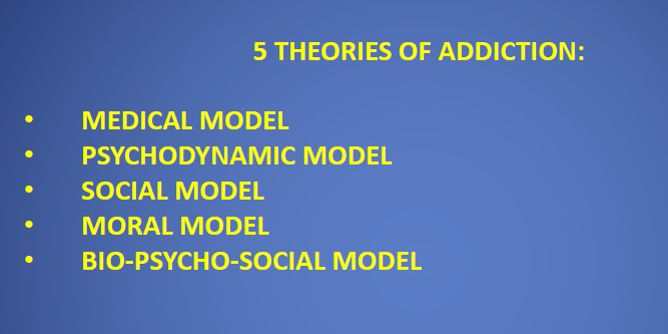 Theories and a biopsychology of addiction