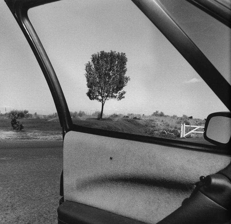 © LEE FRIEDLANDER - Oregon, 1992
