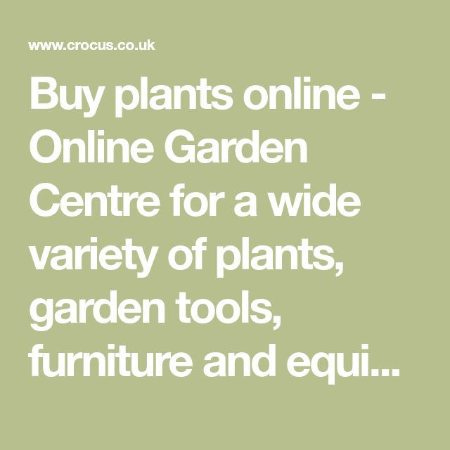 Buy plants online - Online Garden Centre for a wide variety of plants, garden tools, furniture and equipment.