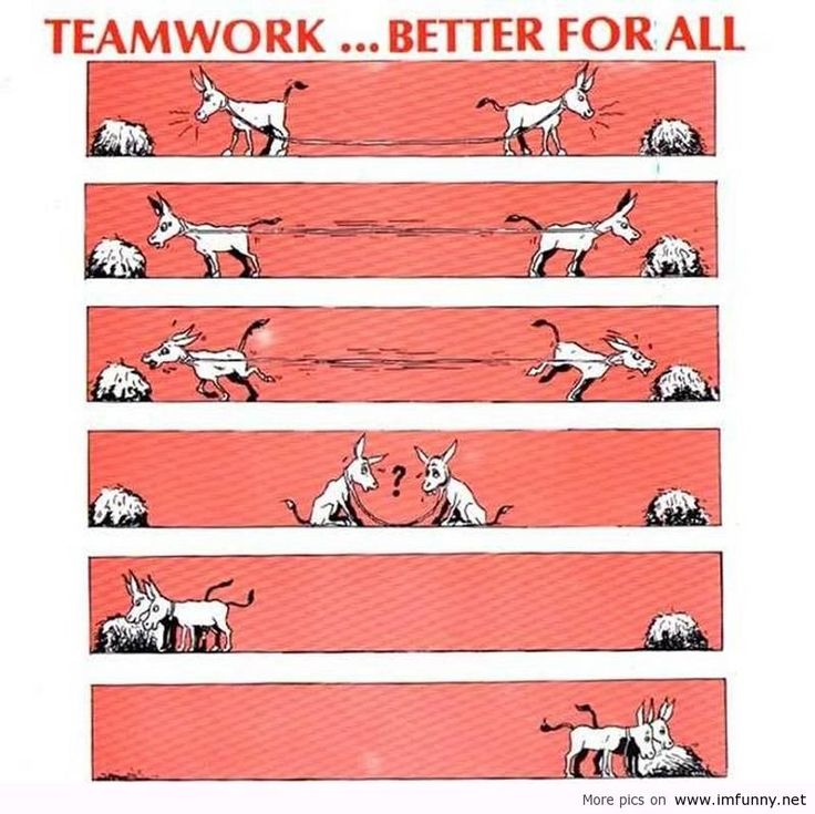 essays on teamwork Narrative essay - the importance of teamwork 7 pages 1649 words november 2014 saved essays save your essays here so you can locate them quickly.