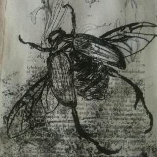 Beetle monoprint onto vintage book page