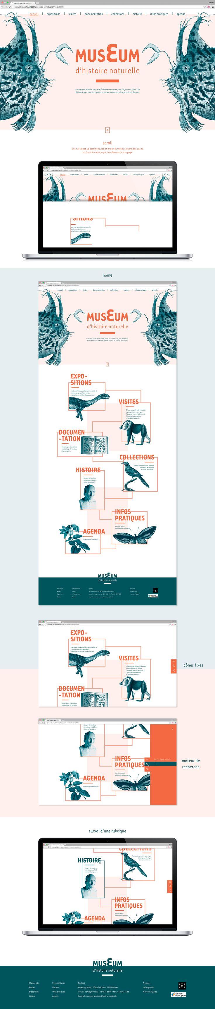 Refonte du site web du museum d'histoire naturelle de Nantes.(Projet fictif) – Andres Osorio