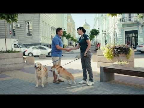 🎬 Сериал Сосны 3 сезон 1-2,3,4 серия смотреть онлайн в HD 720 качестве бесплатно на киного-2016
