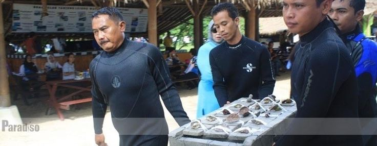 Polda Banten Peduli Terumbu Karang di Tanjung Lesung