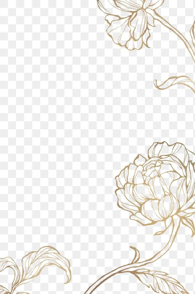 Gold Floral Outline Background Premium Image By Rawpixel Com Nunny Floral Design Drawing Flower Line Drawings Flower Graphic Design