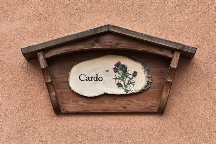 Cardo 2