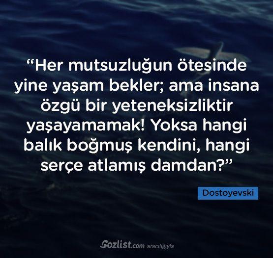 """Dostoyevski sözleri - """"Her mutsuzluğun ötesinde yine yaşam bekler; ama insana özgü bir yeteneksizliktir yaşayamamak! Yoksa hangi balık boğmuş kendini, hangi serçe atlamış damdan - dostoyevski sözleri, mutsuzluk ile ilgili sözler, ölüm ile ilgili sözler, yaşamak ile ilgili sözler, yaşayamamak ile ilgili sözler"""