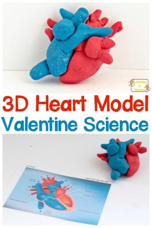 Valentines Stem Activities 3d Diy Heart Model For Kids
