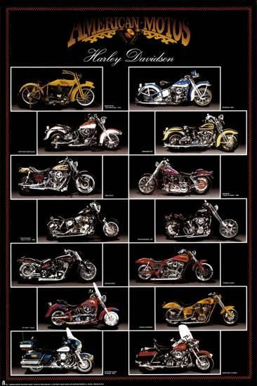 Motorcycle, Harley Davidson Posters at AllPosters.com