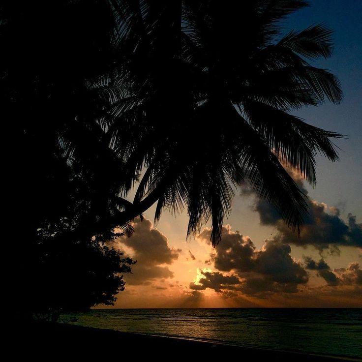 Watch the Sun Rise