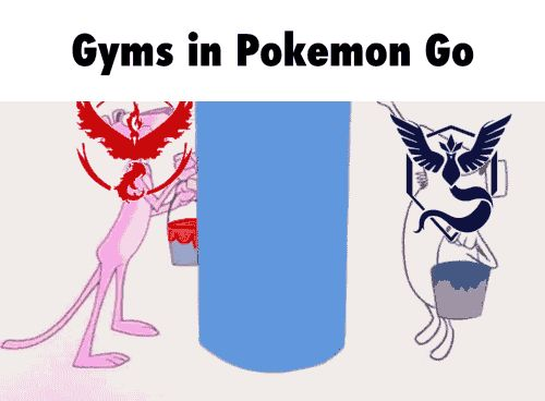 team mystic bag - Google Search