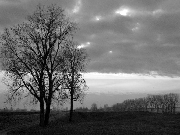 """Monticelli d'Ongina, campagna - (durante le riprese di """"Trent'anni di lavoro"""", un cortometraggio di QUEM quintelemento) - foto di Claudio Rancati"""