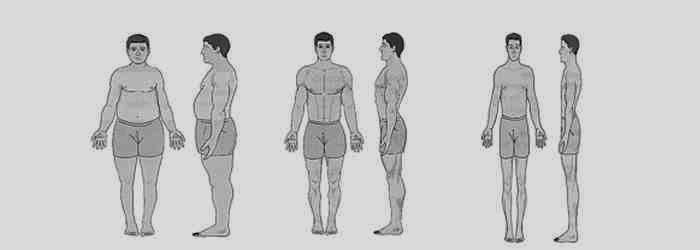Somatotipo y desarrollo muscular