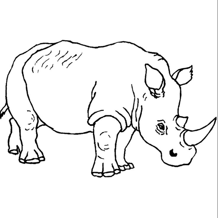 108 Best Line Drawings For Literacy Images On Pinterest