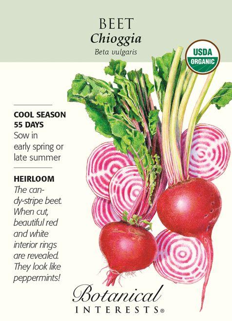 Organic Chioggia Beet Seeds - 1.5 grams - Botanical Interests