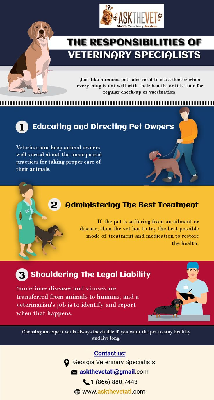 The Responsibilities of Veterinary Specialists in 2020