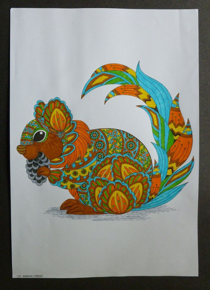 Squirrel taken from  Magic Forest adult colouring book.   Coloured with fine liner pens. July 2016.  By Jennifer Johnston.