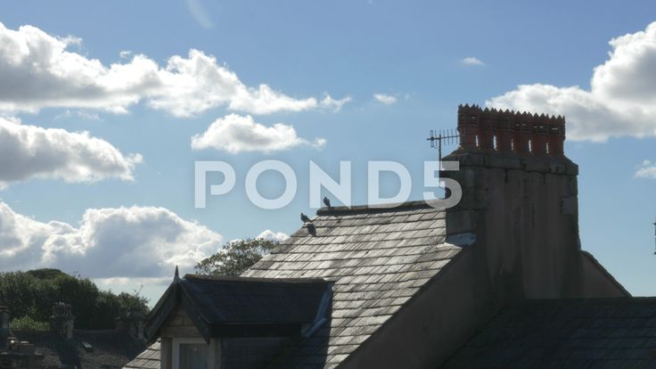 4k Birds Pigeons Sitting On House Roof Chimney With Beautiful Summer Sky Clouds - Stock Footage   by RyanJonesFilms