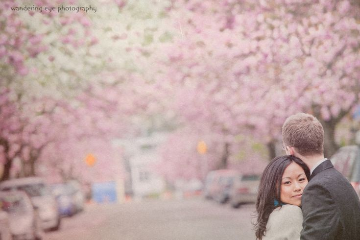 Vancouver Cherry Blossoms