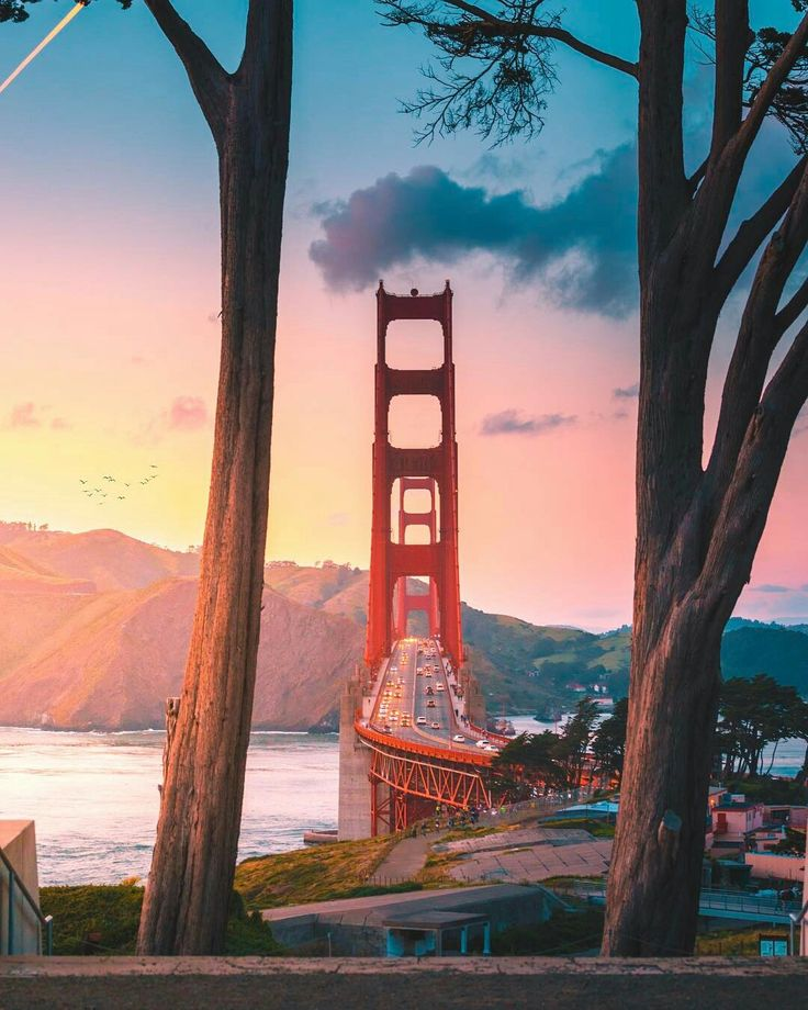 Golden Gate Bridge by Kane Andrade by