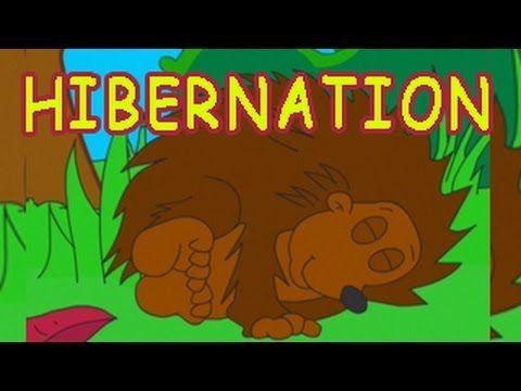 WHY DO ANIMALS HIBERNATE? - YouTube. C2 W5