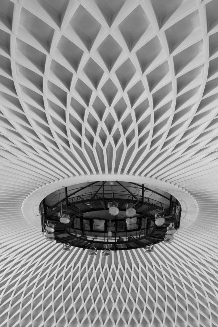 ceiling of the Palazzetto dello sport, Pier Luigi Nervi
