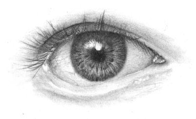 drawing the eye