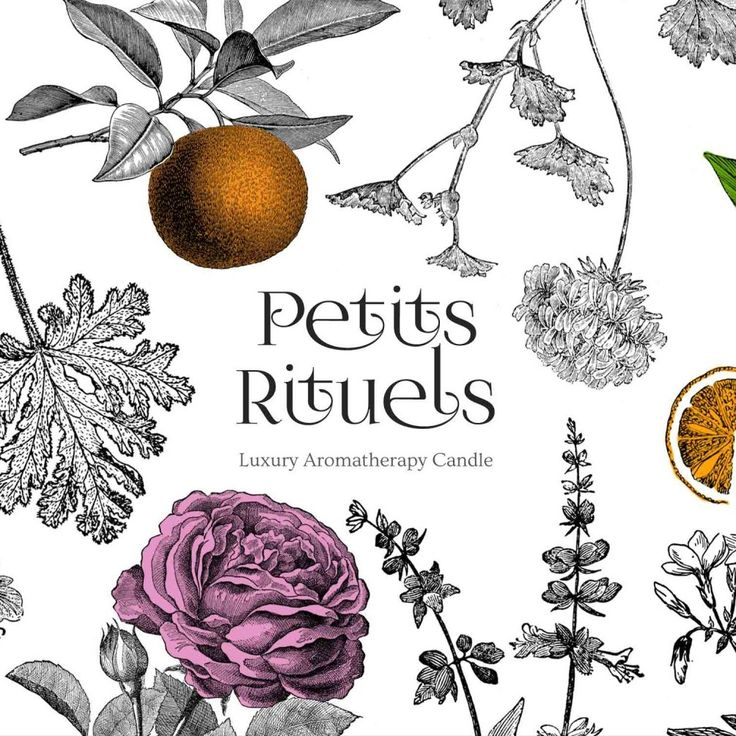 Packaging, illustration and logo design for a new brand of all natural candles made with 100% beeswax and essential oils. The objective of the design was to reflect the botanical qualities of these…