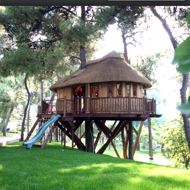 25 Best Images About Awesome Tree Houses On Pinterest