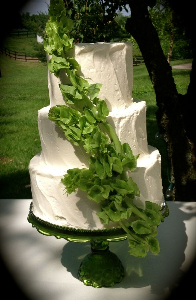 This white cake with green Bells of Ireland is a great example of a new twist to adding fresh cut flowers to the cake. Bells of Ireland are great for color and height and can be found at GrowersBox.com year-round.