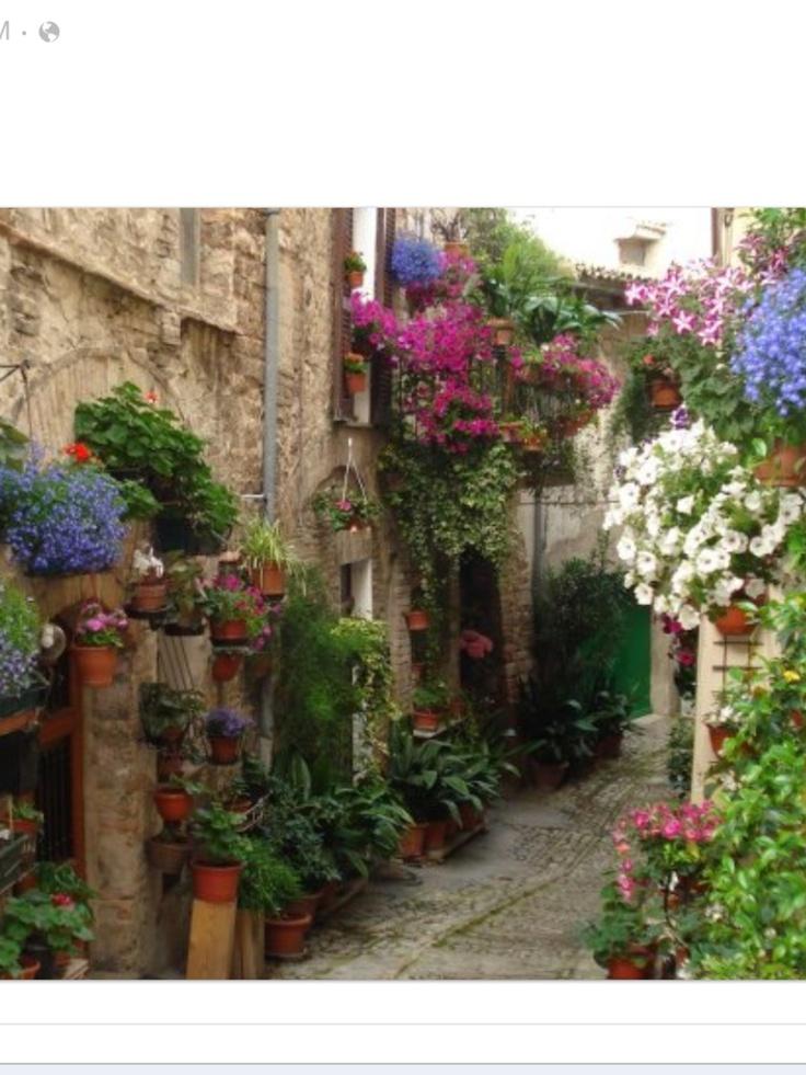 25 best ideas about italian courtyard on pinterest for Italian patio design