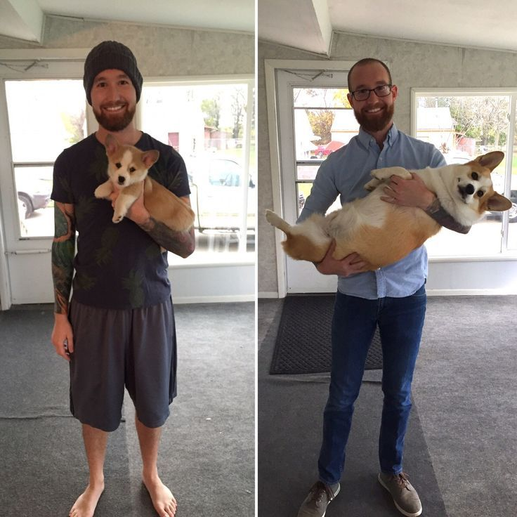 """365 days later... Do you have """"before & after"""" pics with your furbaby? Show us!"""