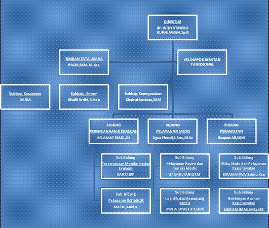 struktur organisasi rsud liwa lampung barat