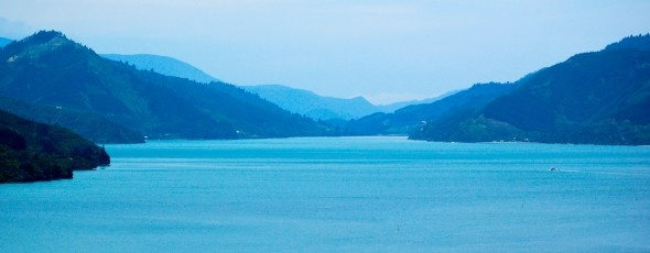 Marlborough Sounds near Havelock, New Zealand