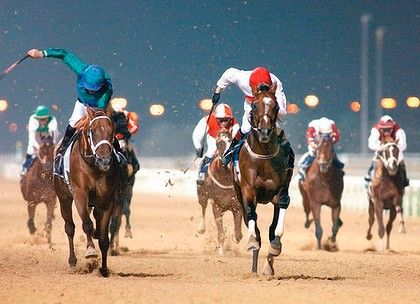 Dubai World Cup horse racing. I want to go to this!