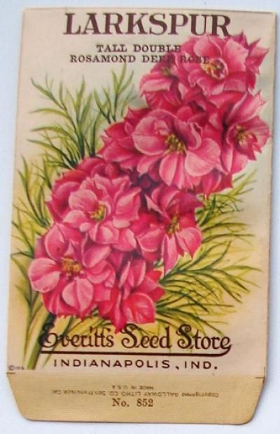 EVERITT'S SEED STORE,  Larkspur 852, Vintage Seed Packet