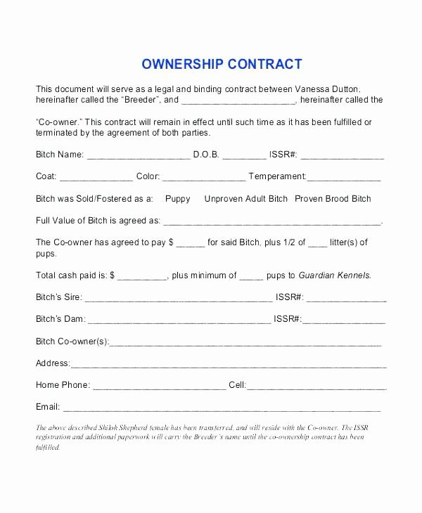 50 Lovely Transfer Of Ownership Contract Template In 2020