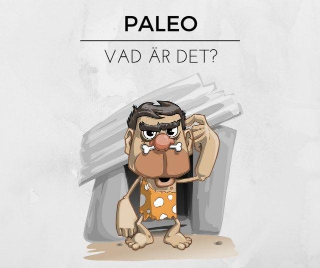 Vad är paleo