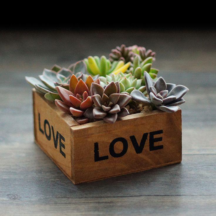 Creative Wooden Stairs Square Flower Pot Desktop Storage Tool Planting Succulents 9.8*9.8*4.5cm