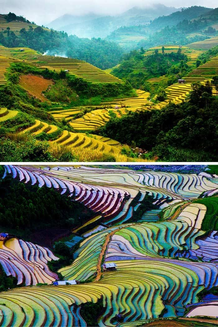 The Vietnamese do not waste any land! They build these rice terraces directly into the hillside to create as much land for farming as possible. Click through to see 20 more UNREAL travel destinations!