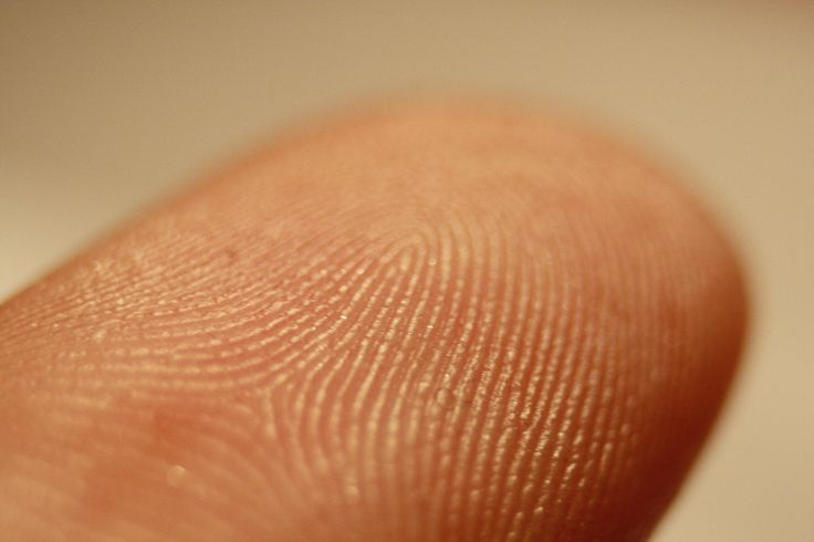 The History and Evolution of Fingerprint Identification