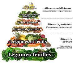 Pyramide stylisée d'une alimentation vivante équilibrée