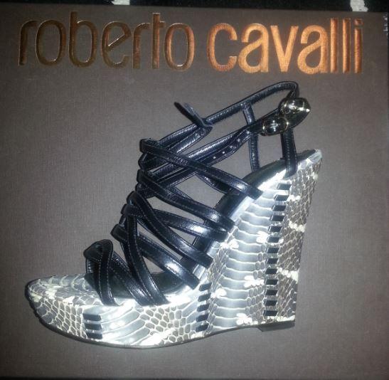 Alors ca, c'est la paire de chaussure la plus chèreeeeeeeeeeeeee que je possède ! elle vaut 1000€ au moins. Autant vous dire que je ne les mets pas à toutes occasions !