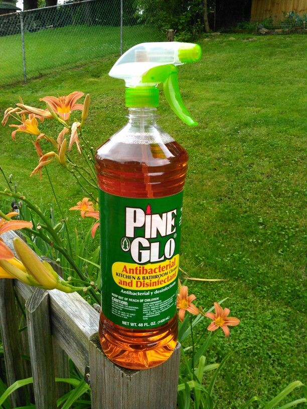 Flies Hanging Around Front Door Part - 22: Pine Glo Or Pine Sol Really Keeps The Flies Away Outside. I Just Stuck  Sprayer