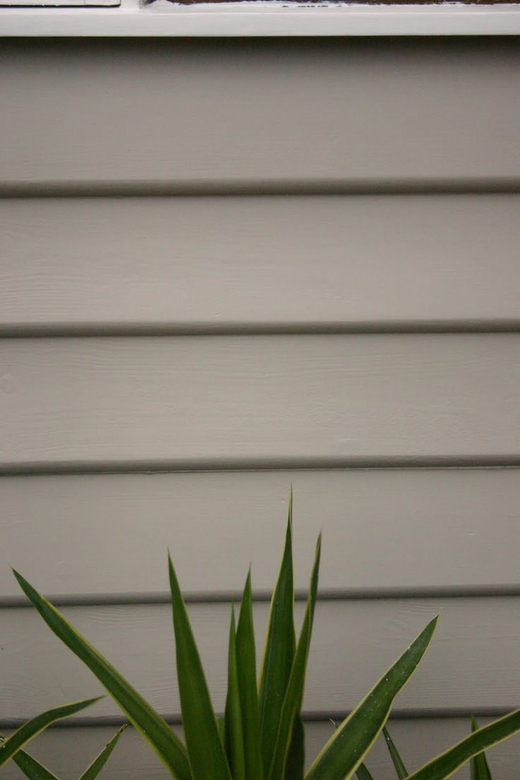 10 Best Images About Exterior Paint Colours On Pinterest Dulux Natural White Back Deck And