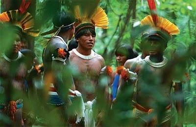 Indios Brasileiros