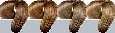 Warm brown hair colors