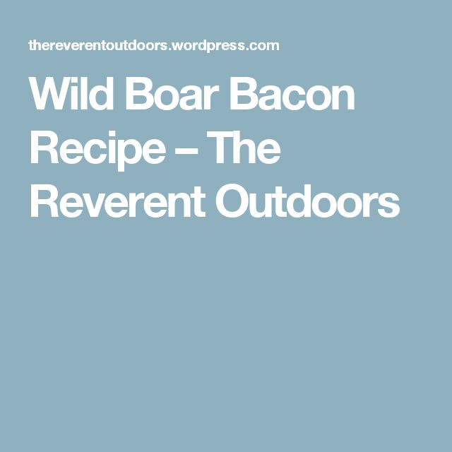 Wild Boar Bacon Recipe – The Reverent Outdoors