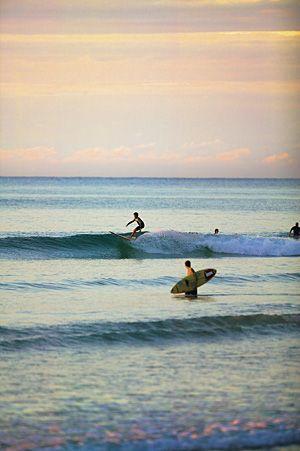 Surfing Laguna Bay at Sunset, Noosa Beach, Sunshine Coast